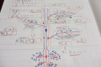 中学のテスト対策 中間テスト ... : 数学無料問題 : 数学